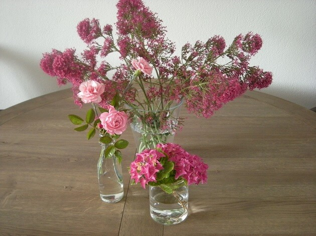 DIY-tuinbloemen-in-huis-MindandBeauty.nl-1