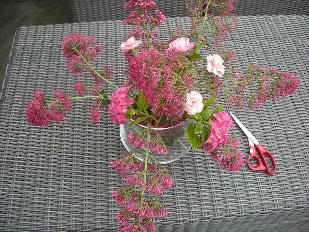 DIY-tuinbloemen-in-huis-MindandBeauty.nl-3