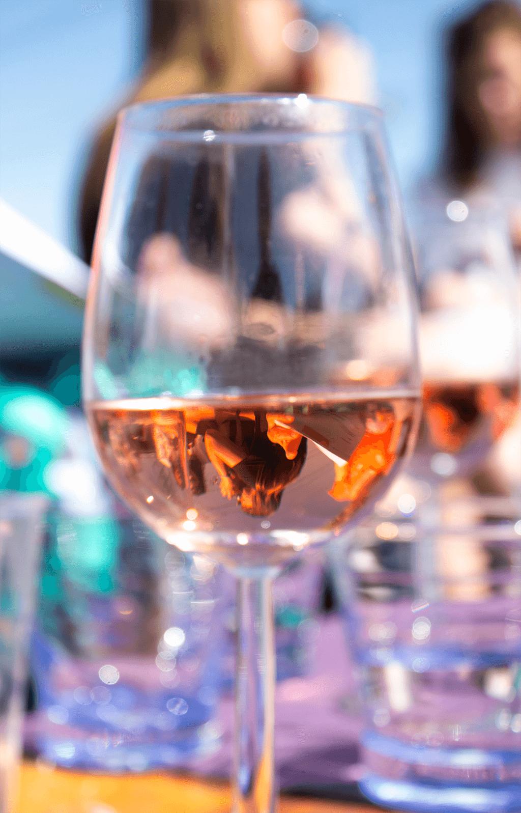 Wijnproeverij op een boot in het Westland met GrapeWine | MindandBeauty.nl